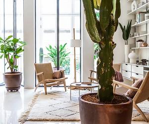 Apartament in Argentona Street / YLAB Arquitecto