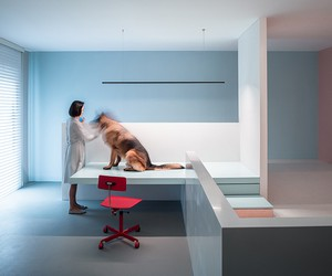 The Dog House by Atelier About Architecture
