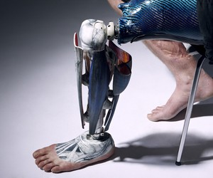 The Alternative Limb Project