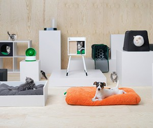IKEA's Pet Furniture and Accessories Collection