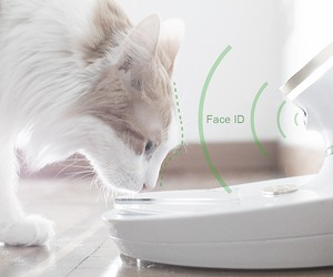 Mookie A.I. Powered Pet Bowl