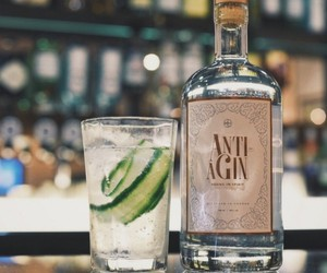 ANTI-AGIN, A GIN WITH ANTI-AGEING PROPERTIES