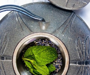 Homemade Lavender & Mint Tea