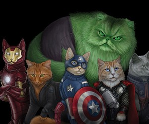 Superhero Cats
