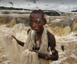 2012 World Press Photos of the Year