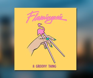"Flamingosis - ""A Groovy Thing"" (Full Stream)"