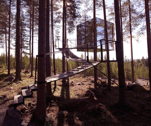amazing treehotel in sweden