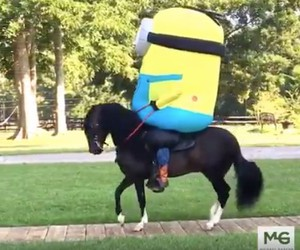 Just a Minion riding a horse