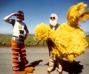 Big Bird Documentary