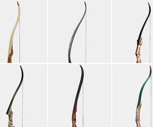 The Best Recurve Bows