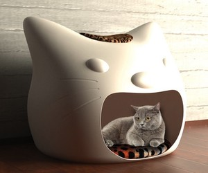 Kitty Meow Cat Furniture Design