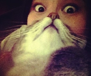 "Know Your Meme: ""Cat Beard"" Photo Fad"