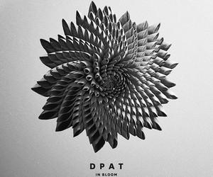 Dpat - Bloom