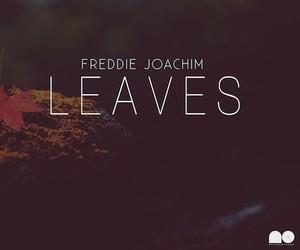 "Freddie Joachim – ""Leaves"" (Full EP Stream)"