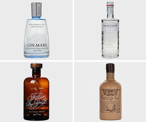 Best Gins To Drink