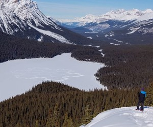Simon Beck's Snow Art @ Banff National Park
