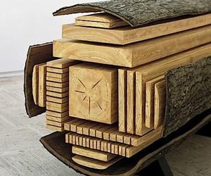 A tree trunk - Vincent Kohler