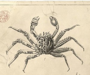 THESE ARE THE HYBRID CRUSTACEANS OF STEEVEN SALVAT