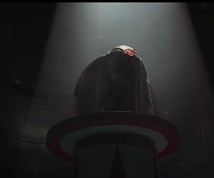 """Dumbo"" by Tim Burton next year in the cinema"