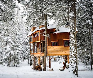Holidays in a tree house - it does not get more