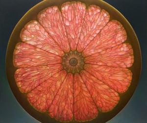 Sliced Fruits Paintings by Dennis Wojtkiewicz
